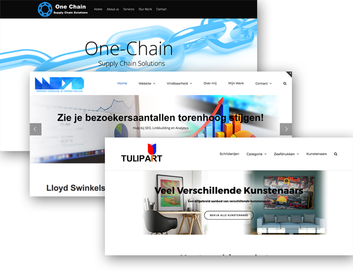 klant portfolio website design lloyd swinkels